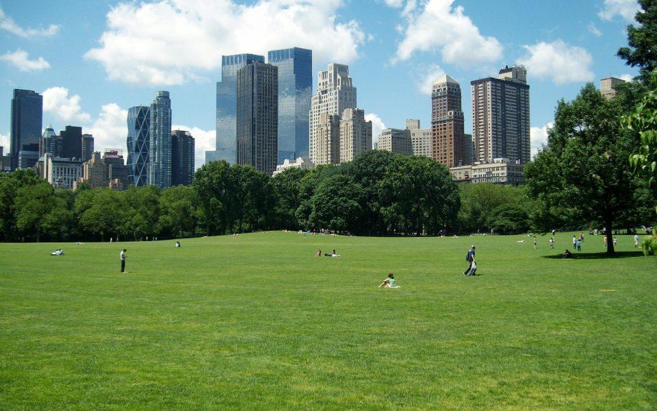 Cosa fare a Central Park