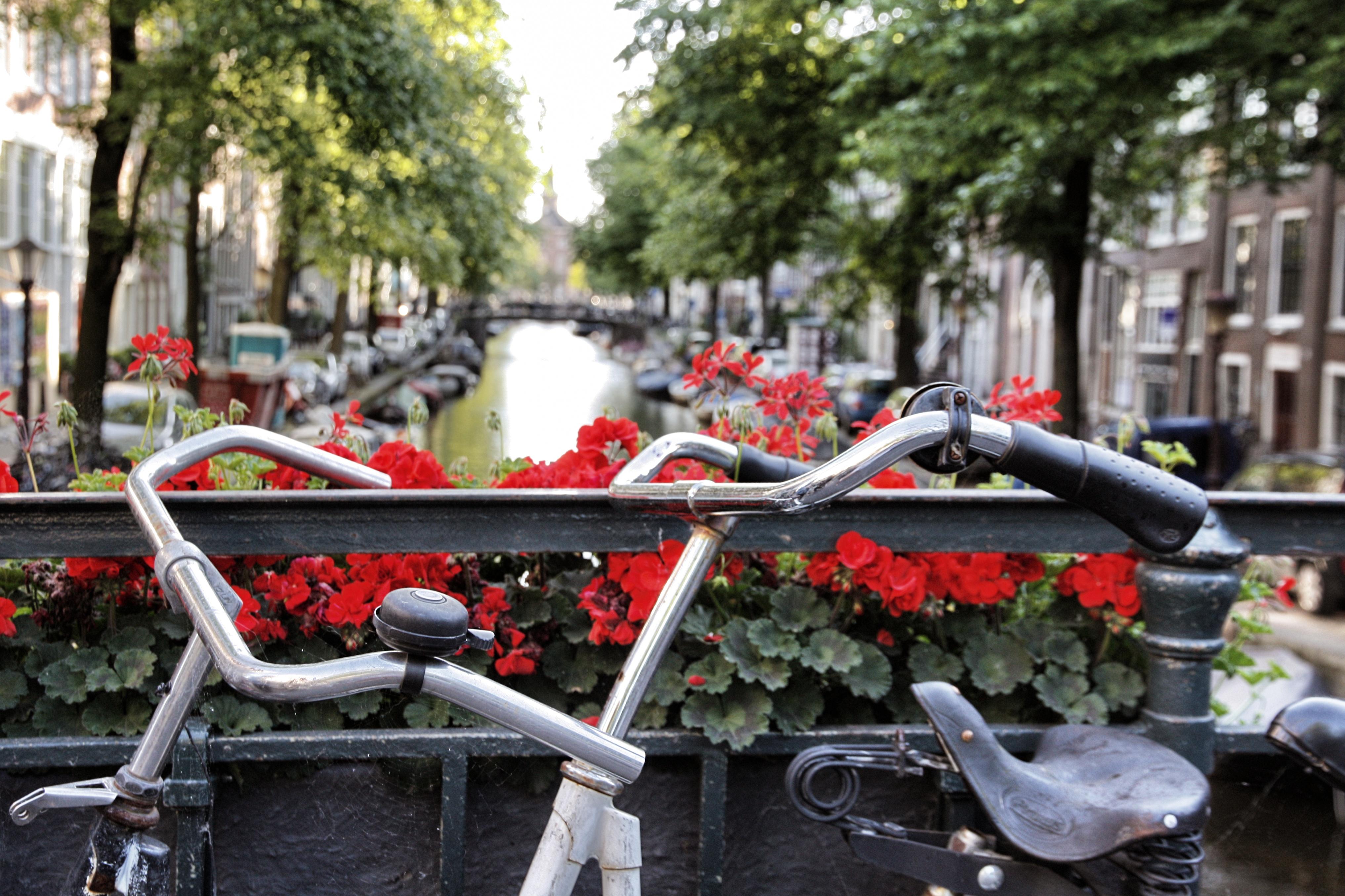 Amsterdam, un itinerario in bicicletta