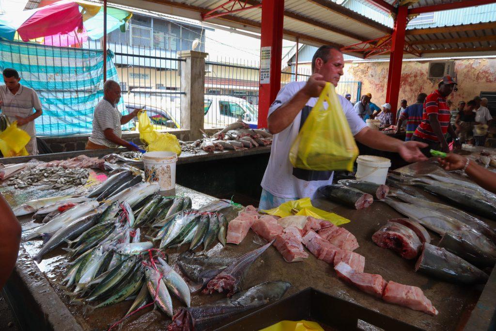 Cosa vedere alle Seychelles