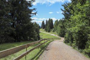 Avelengo Merano 2000: montagna d'estate in Alto Adige